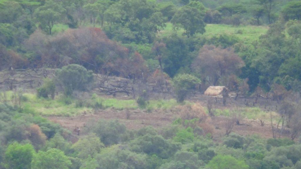 Photos d'un campement des agriculteurs derrière l'armoiries dans les escarpement de KABASHA